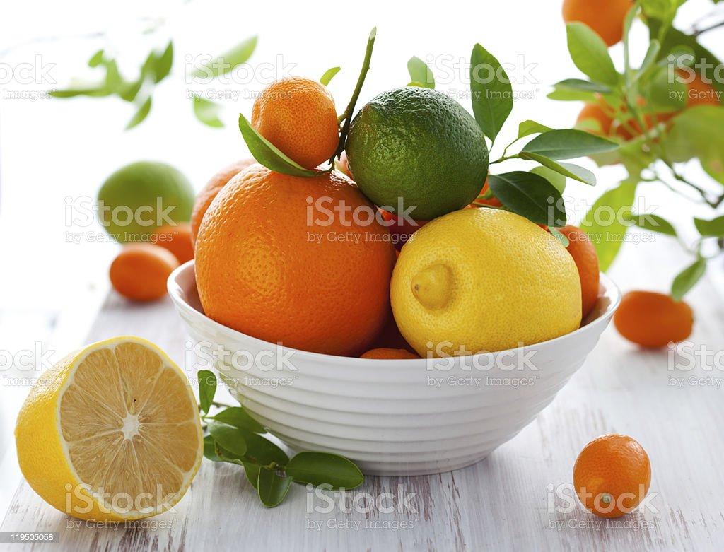 Mixed citrus fruit stock photo