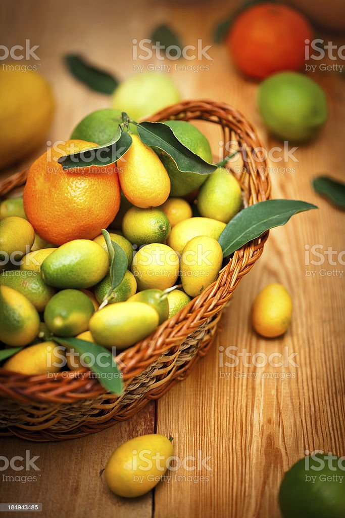 Mixed citrus fruit royalty-free stock photo