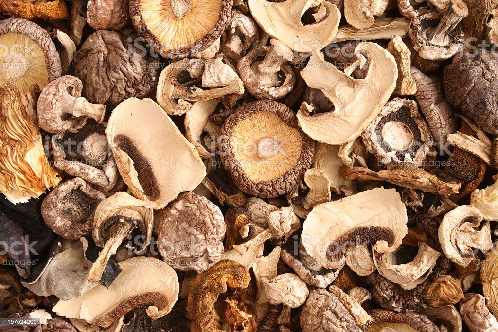 Mixed dried mushrooms stock photo