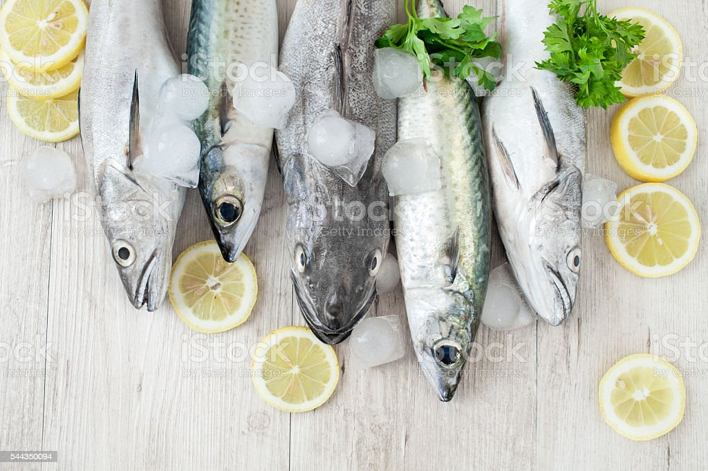 Mixed Fish stock photo