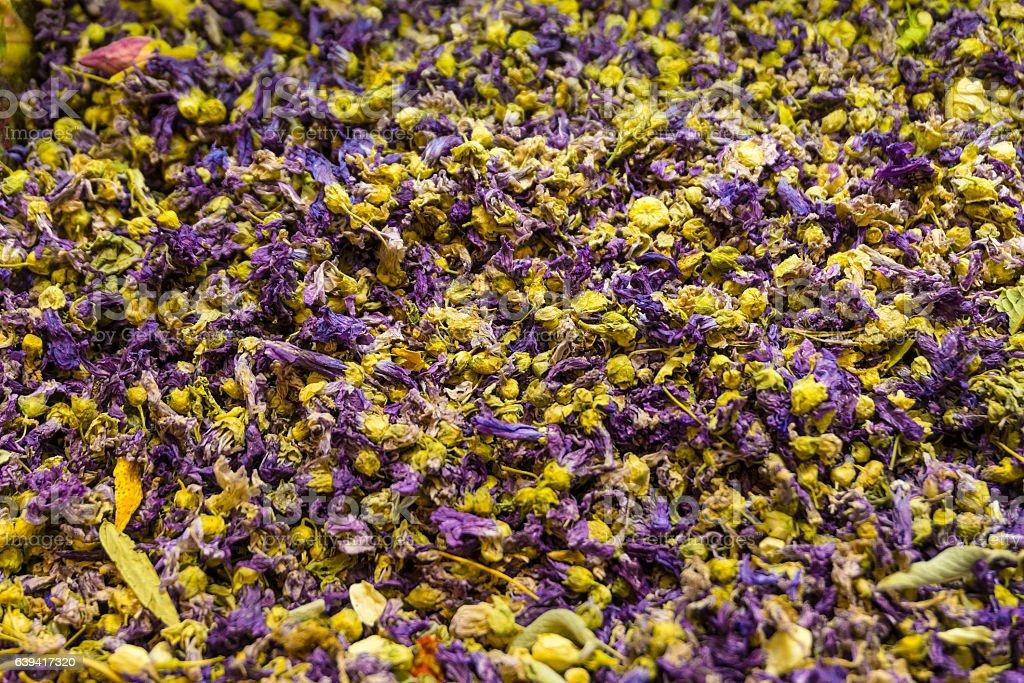 Mixed flower budss stock photo