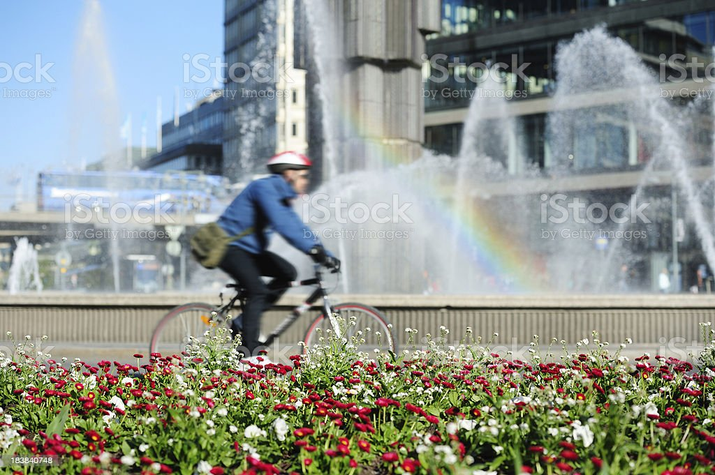 Mixed flowers, traffic off focus royalty-free stock photo