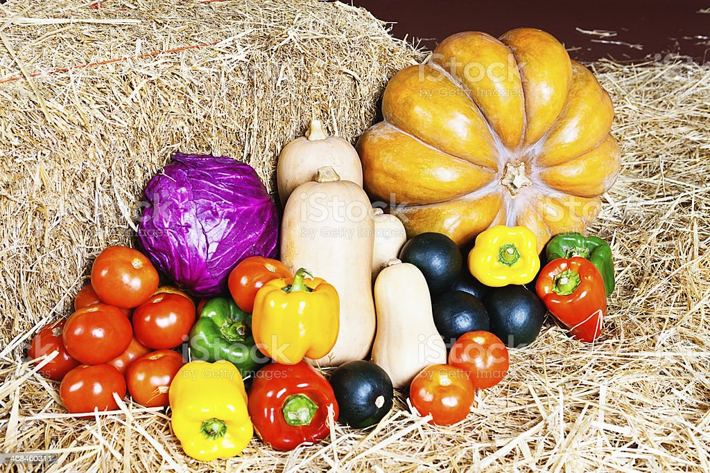 Mixed fresh vegetables rest on straw at a farmers market royalty-free stock photo