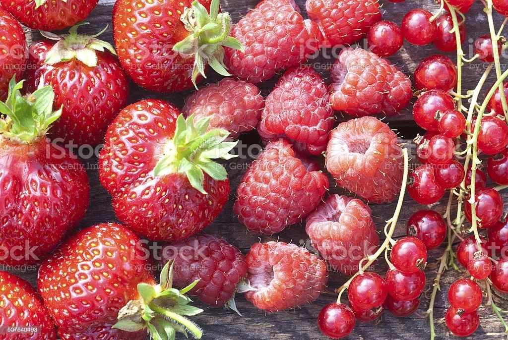 Mezcla de frutas foto de stock libre de derechos