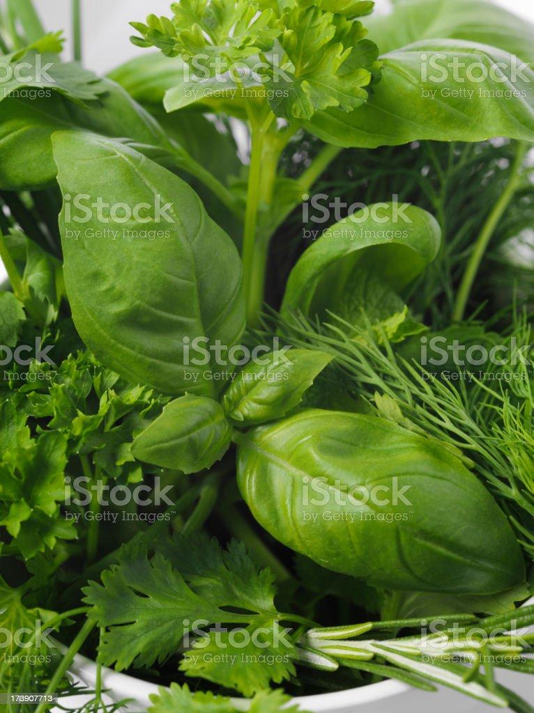 Mixed Garden Herbs royalty-free stock photo