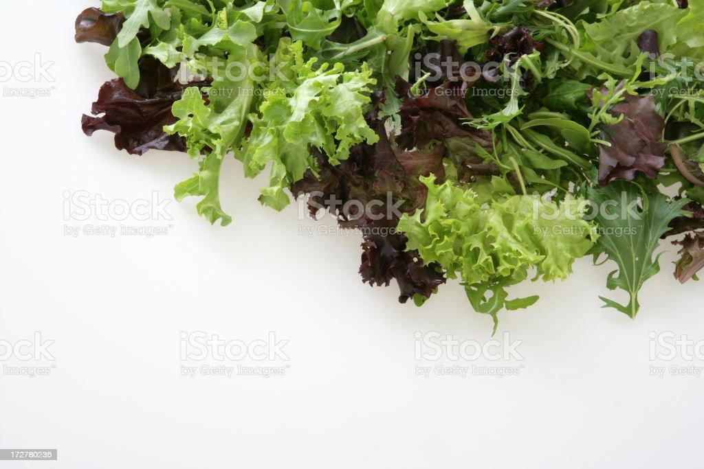Mixed Lettuce stock photo