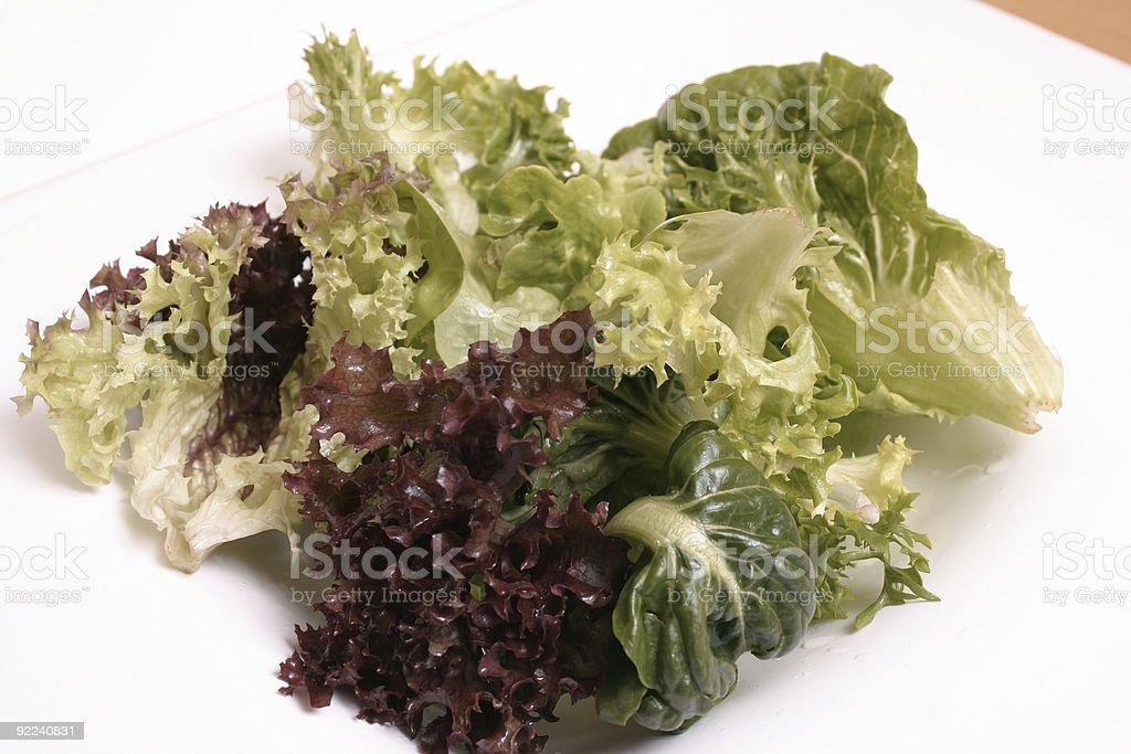 Mixed lettuce royalty-free stock photo