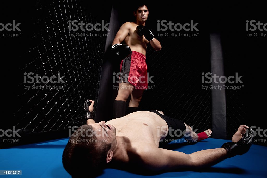 Mixed martial artists fighting - knock out stock photo
