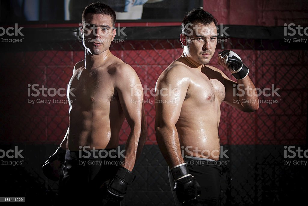 Mixed Martial Arts Fighters stock photo