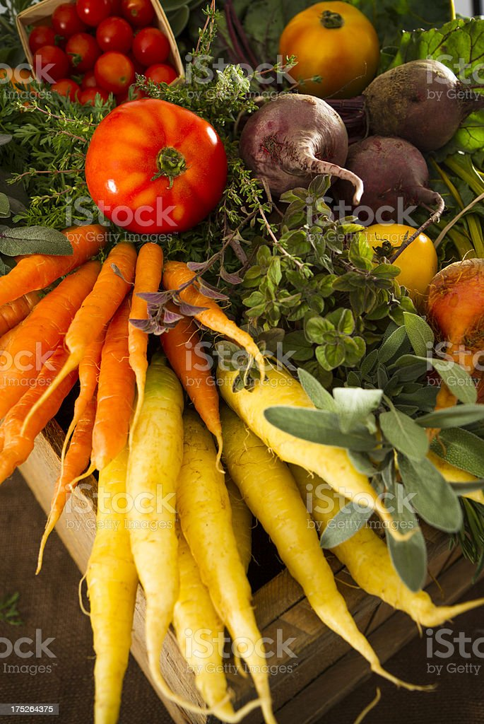 Mixed Organic Vegetables royalty-free stock photo