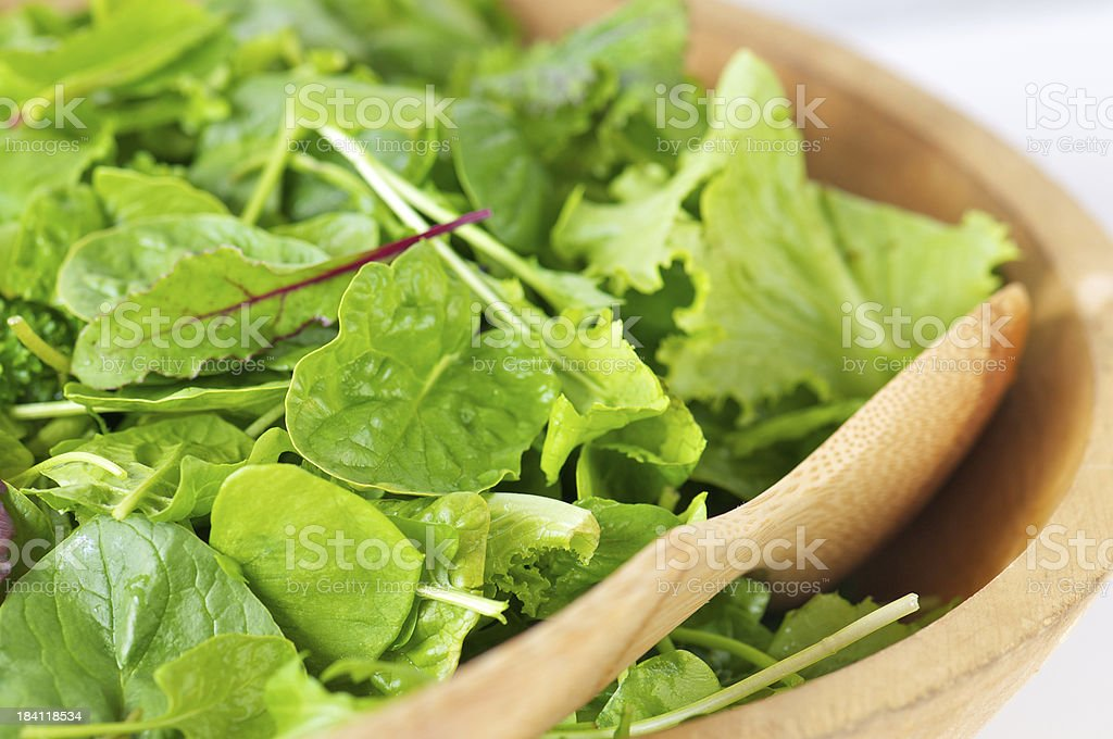 Mixed Salad Greens in Wooden bowl royalty-free stock photo