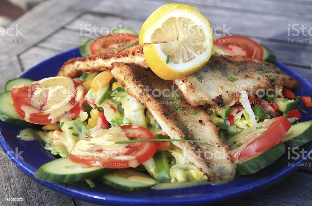 Mixed vegetable salad with filets of halibut royalty-free stock photo