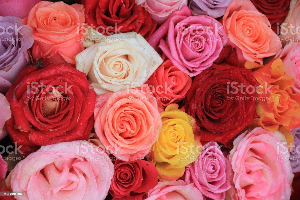 Mixed wedding roses stock photo
