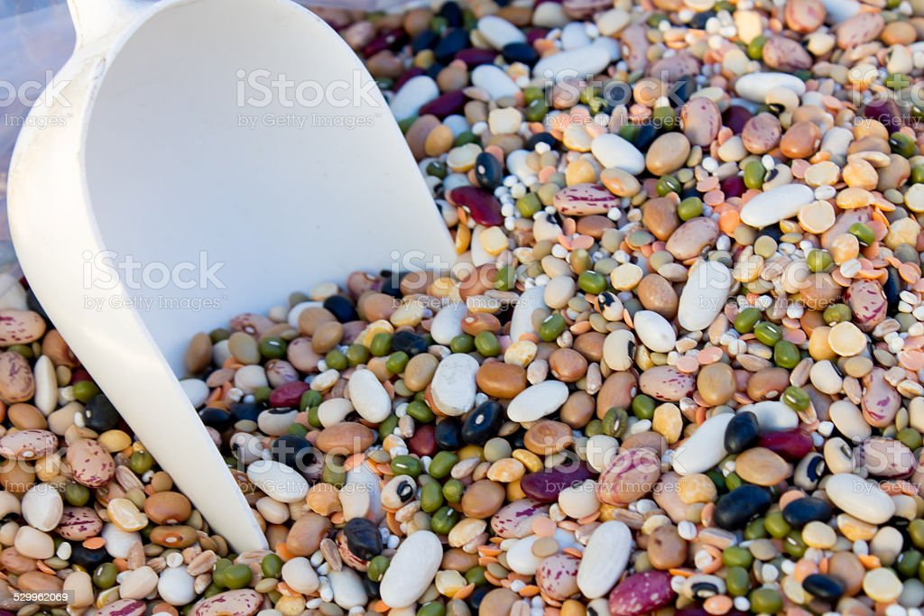mixture of legumes and spelt stock photo