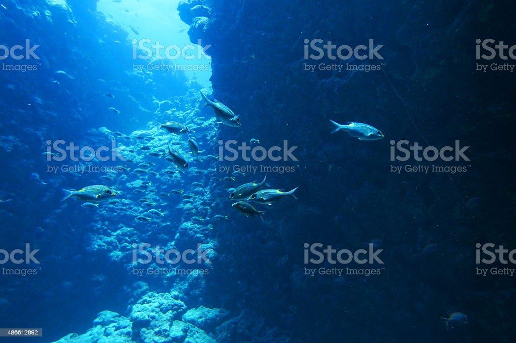 Miyakojima diving terrain point stock photo