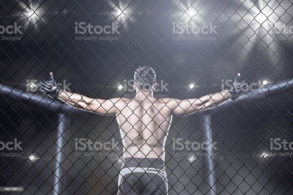 mma fighter in arena celebrating win, behind view stock photo