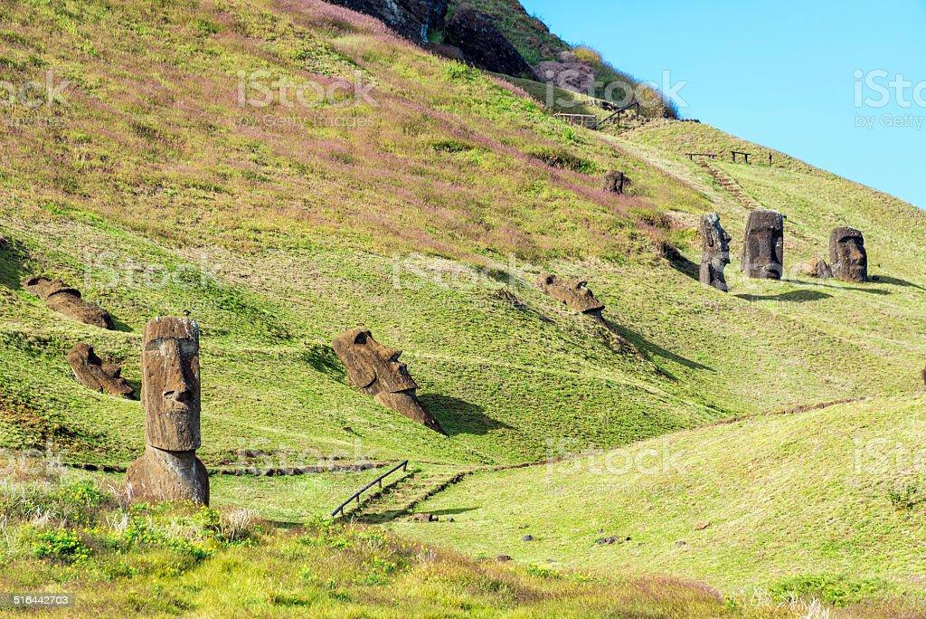 Moai at Rano Raraku stock photo