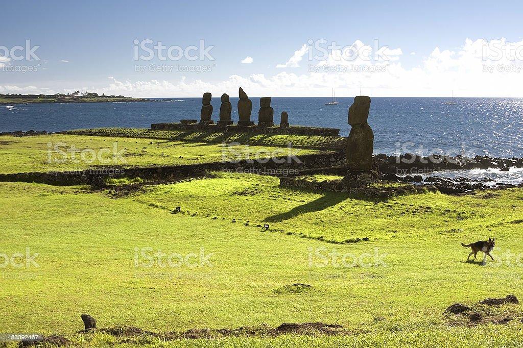 Moai on Easter Island. Ahu Tahai stock photo