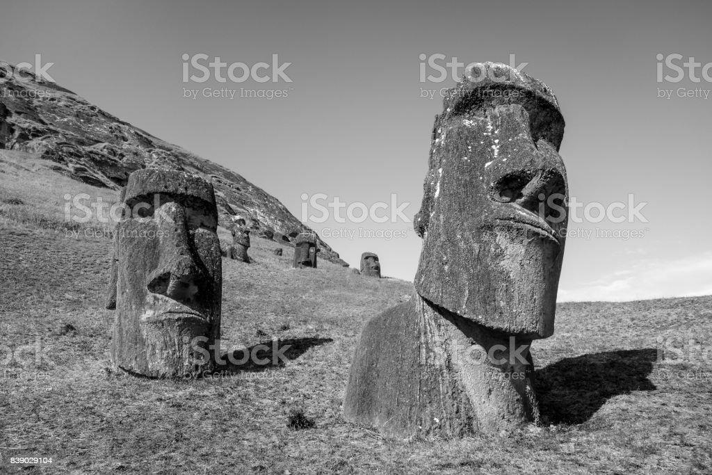 Moais statues on Rano Raraku volcano, easter island. Black and white picture stock photo