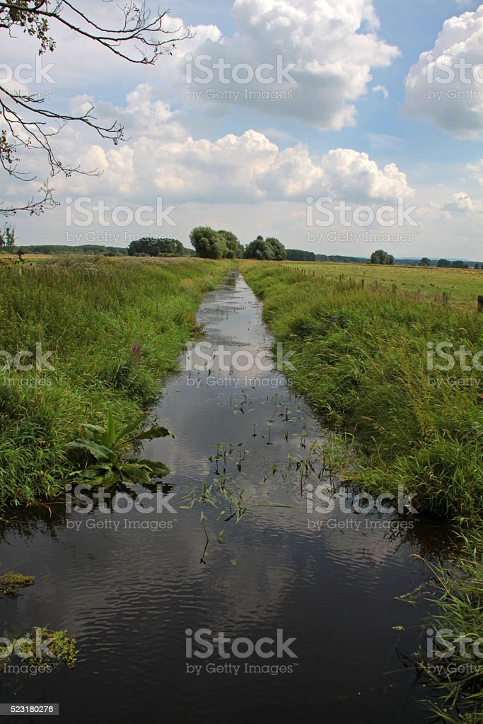 Moat in Meerbruch of Steinhude stock photo