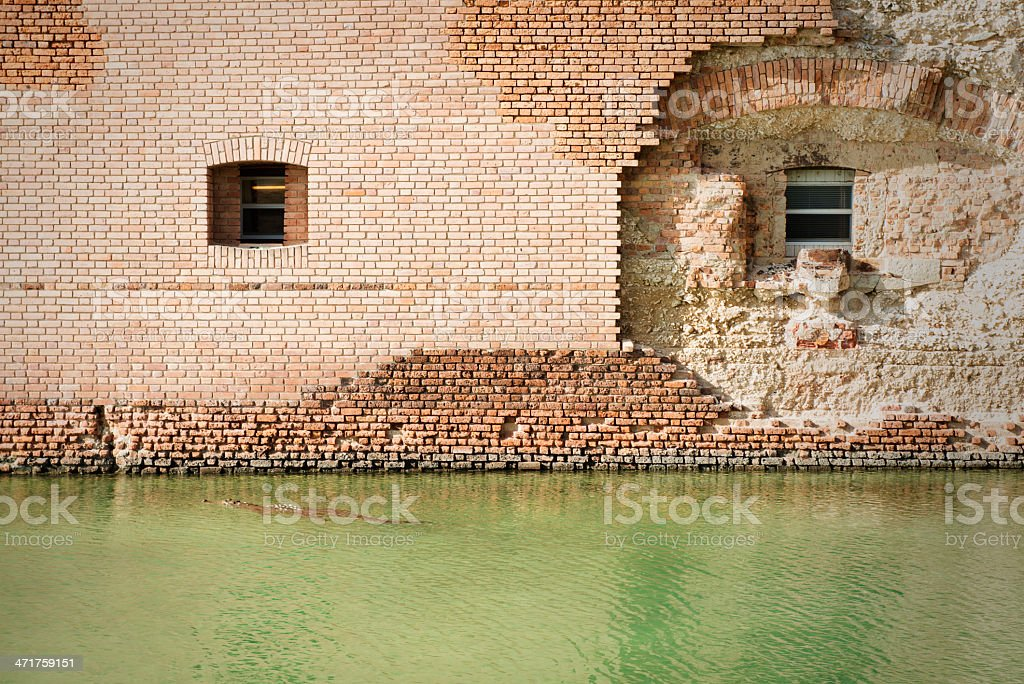 Moat with Crocodile stock photo