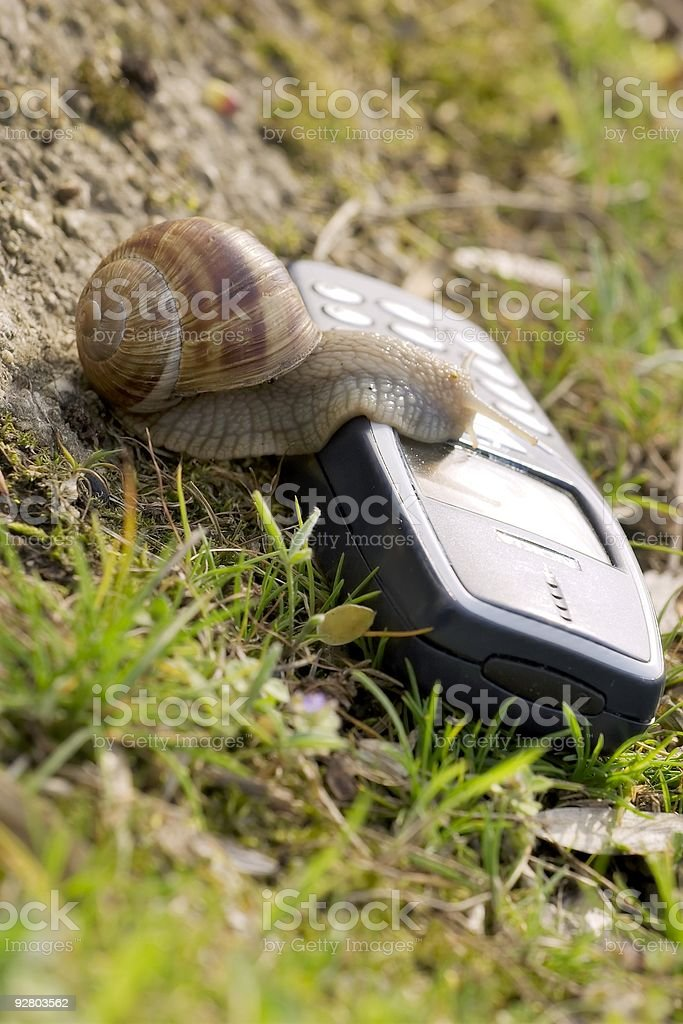 Mobile in the nature royalty-free stock photo