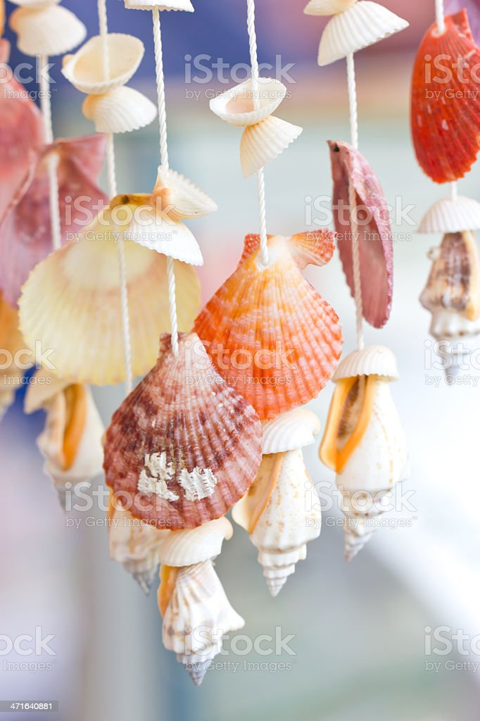 Mobile made from variety shells. royalty-free stock photo