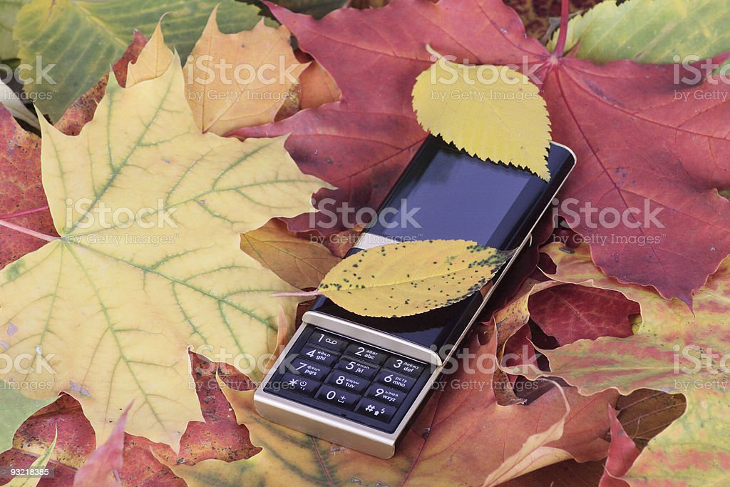 Mobile phone on autumn foliage royalty-free stock photo