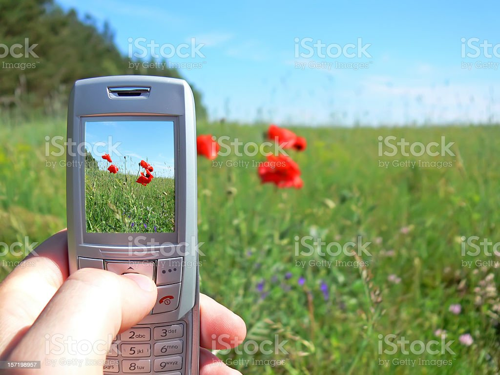 Mobile phone with a camera royalty-free stock photo