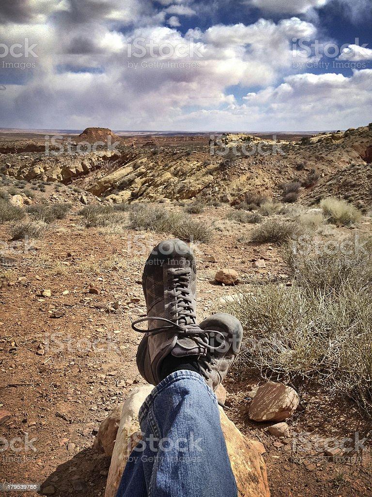 mobilestock desert view landscape royalty-free stock photo