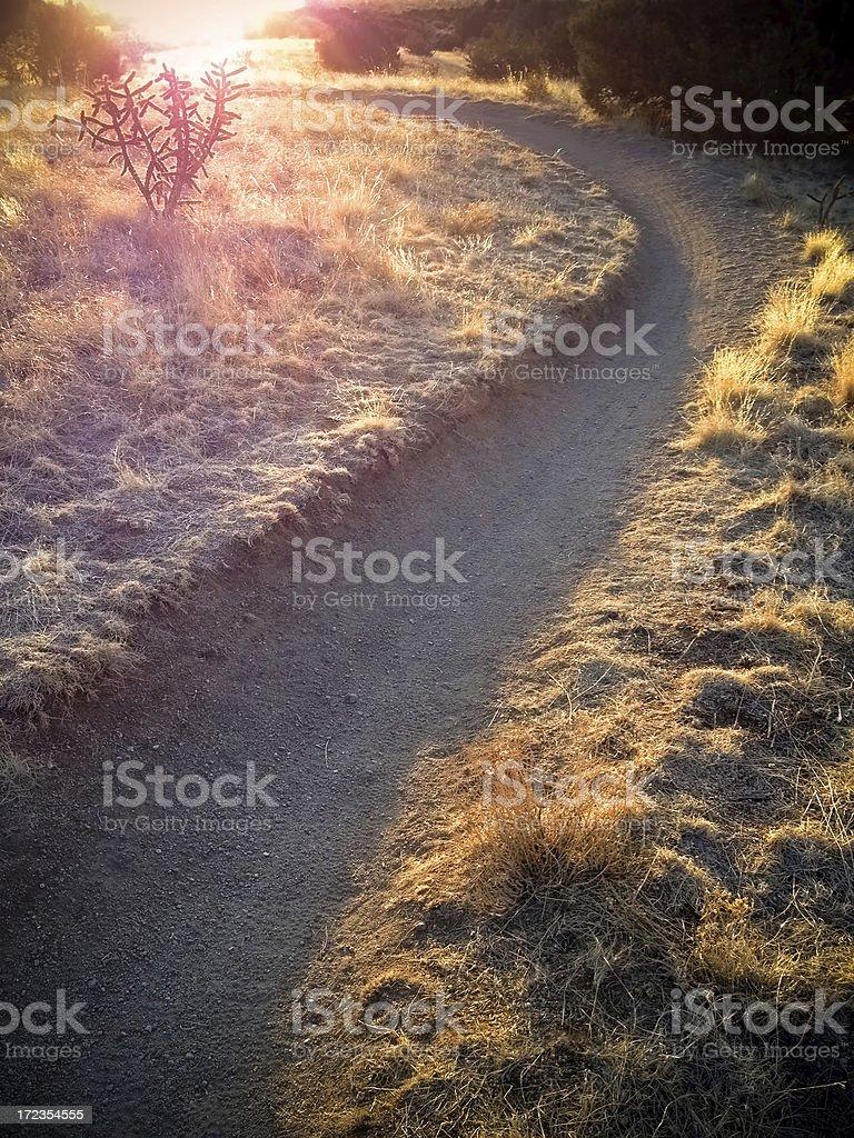 mobilestock southwest landscape stock photo
