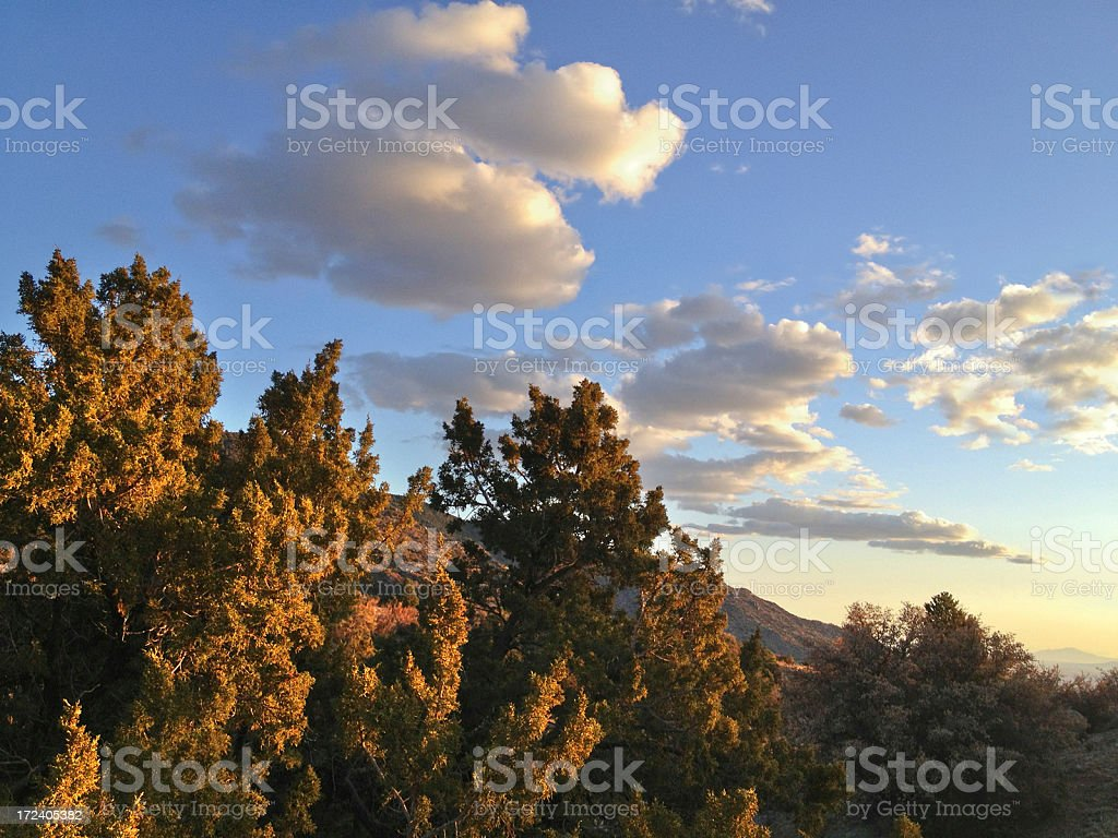 mobilestock southwest sunset landscape royalty-free stock photo