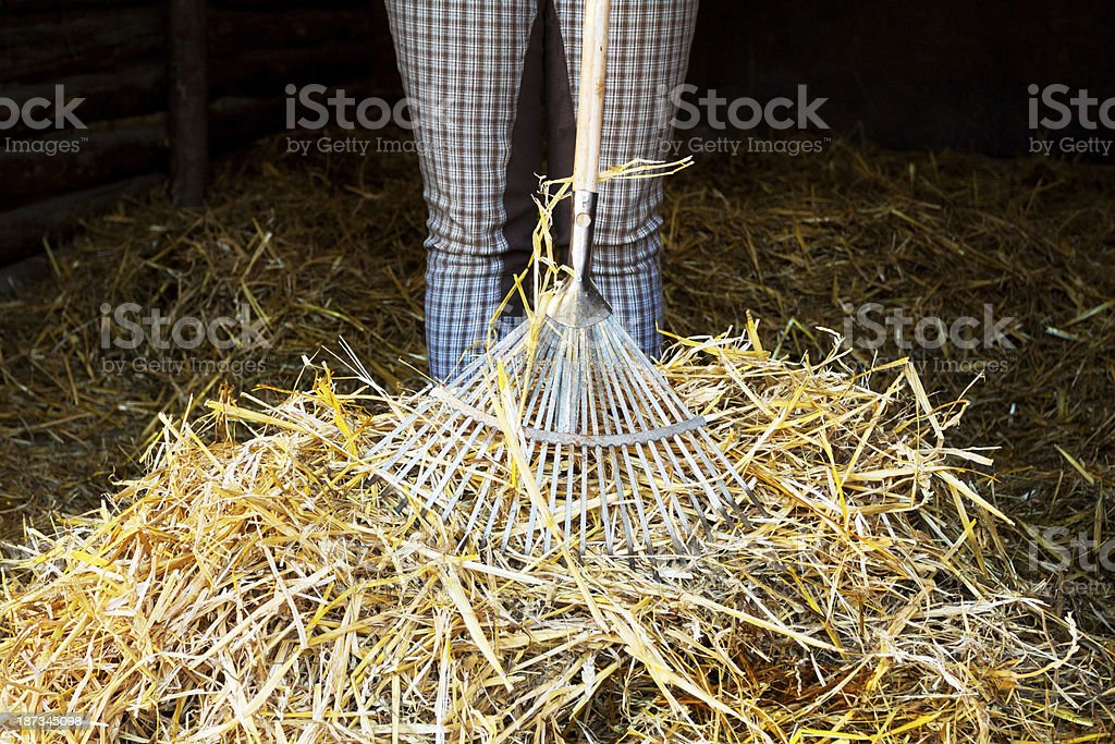 Mocking out stable stock photo