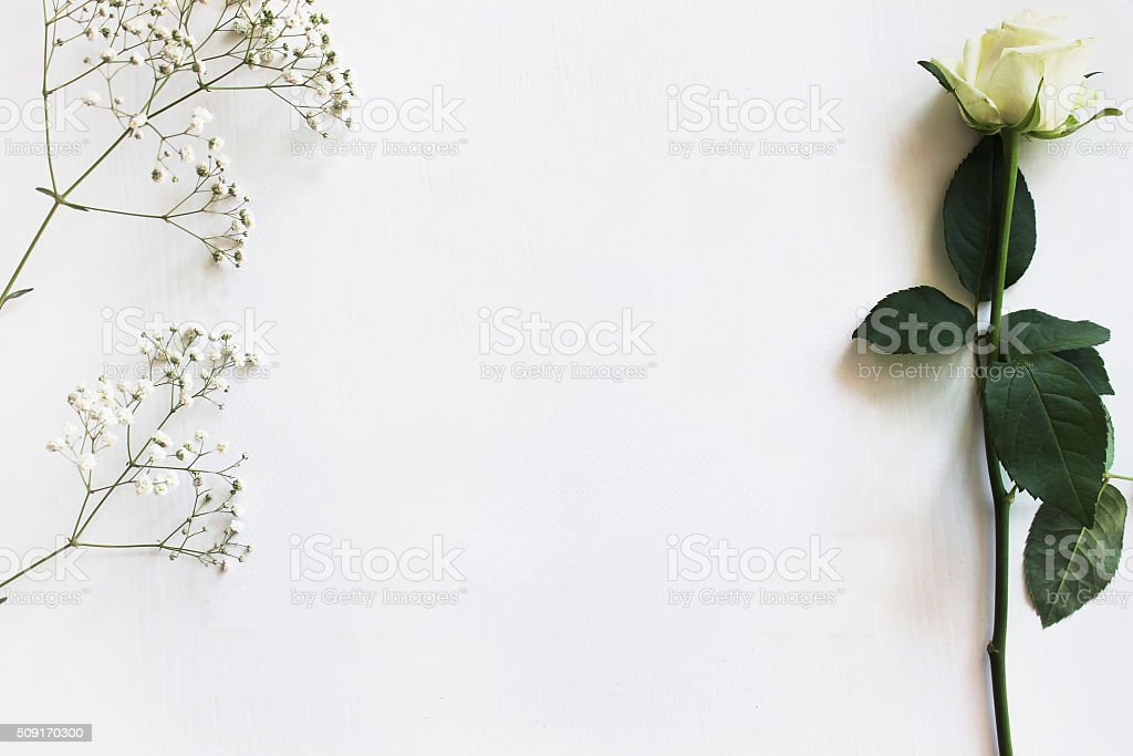 Mockup with a Rose stock photo