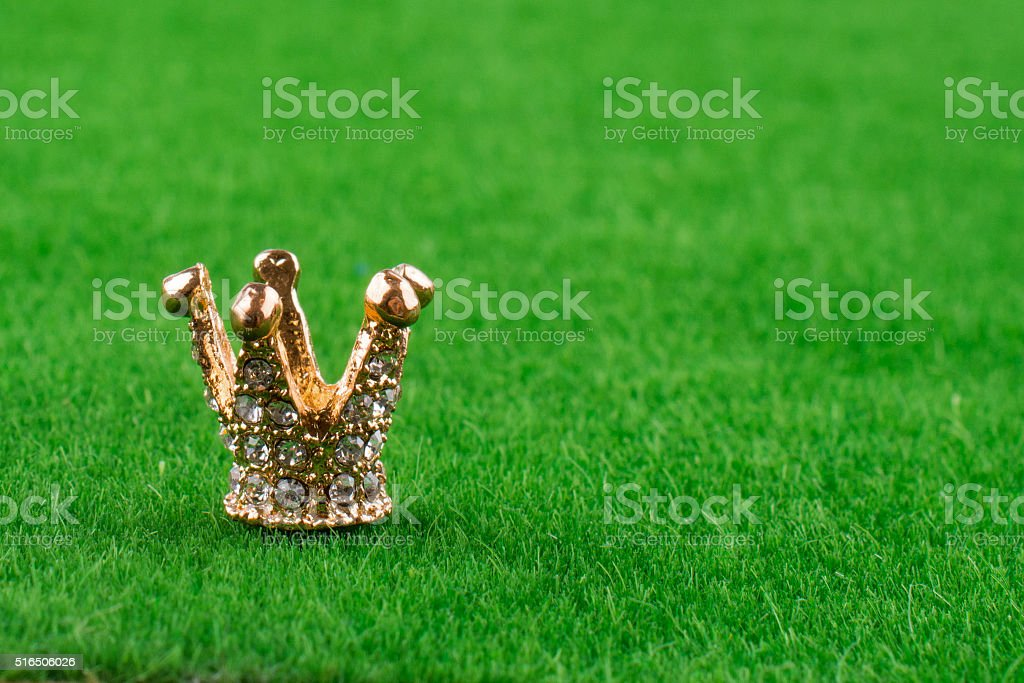 Model crown in grass stock photo