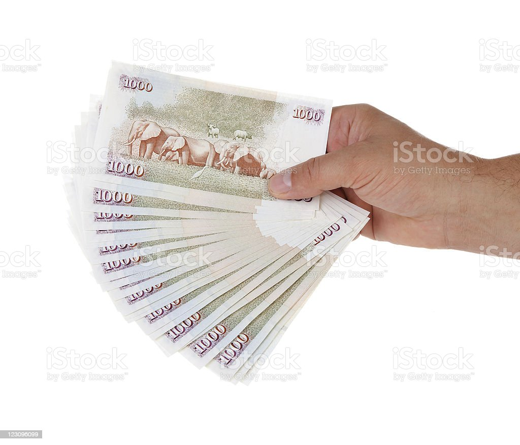 A model displays a handful of Kenyan paper currency stock photo