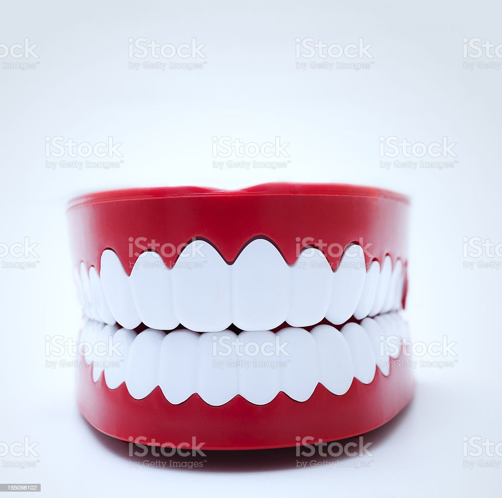 Model Gums and Teeth stock photo