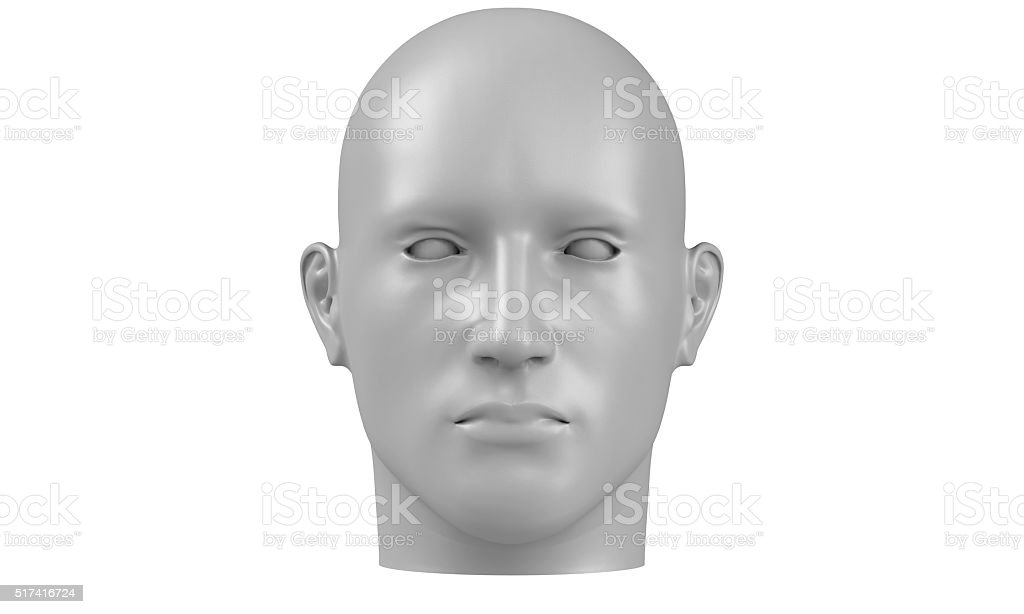 model of a humane head isolated on white stock photo