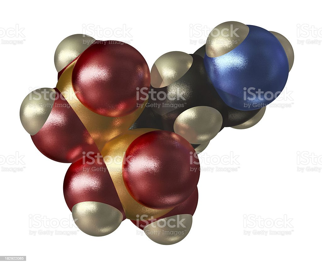 Model of Alendronate royalty-free stock photo