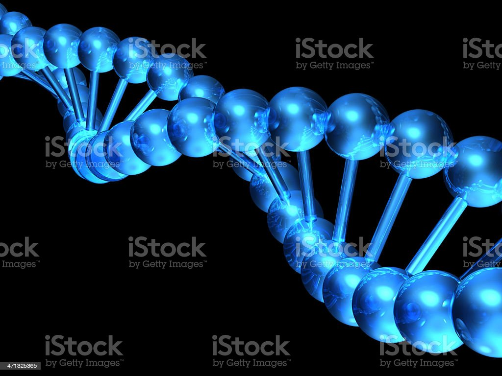 DNA model. royalty-free stock photo