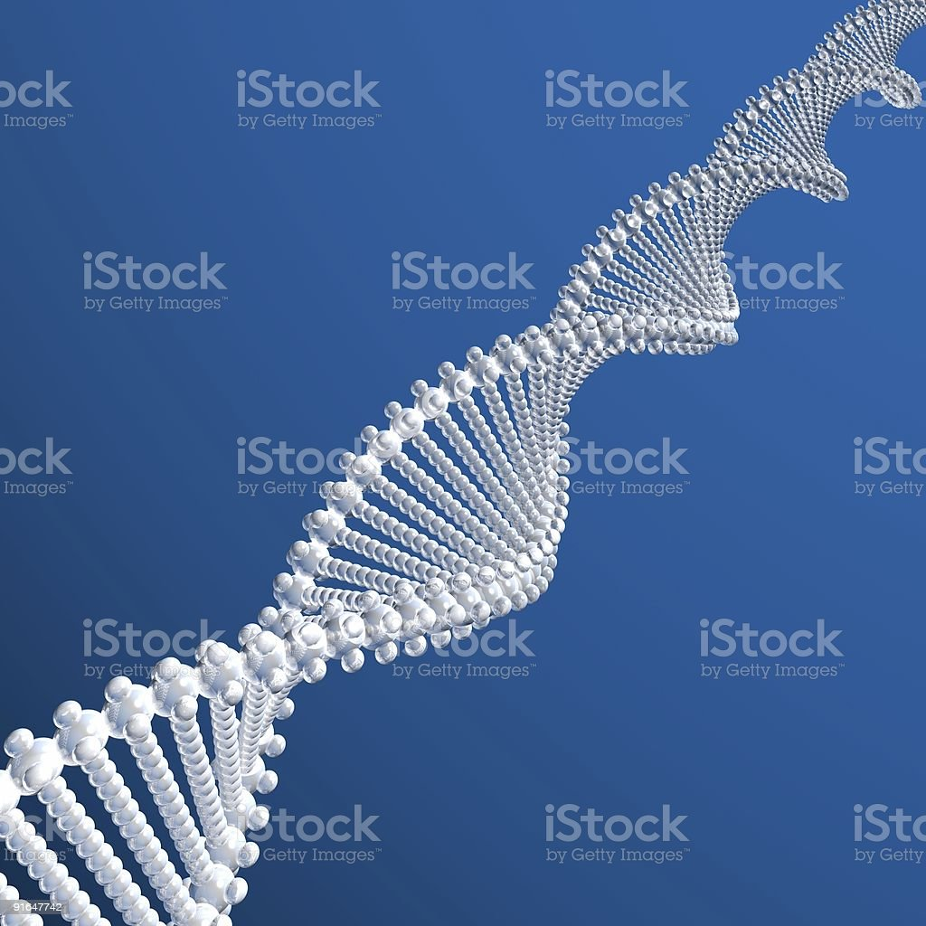 DNA model royalty-free stock photo