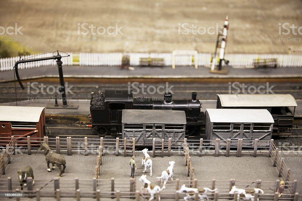 Model railway, freight train and cattle trucks stock photo