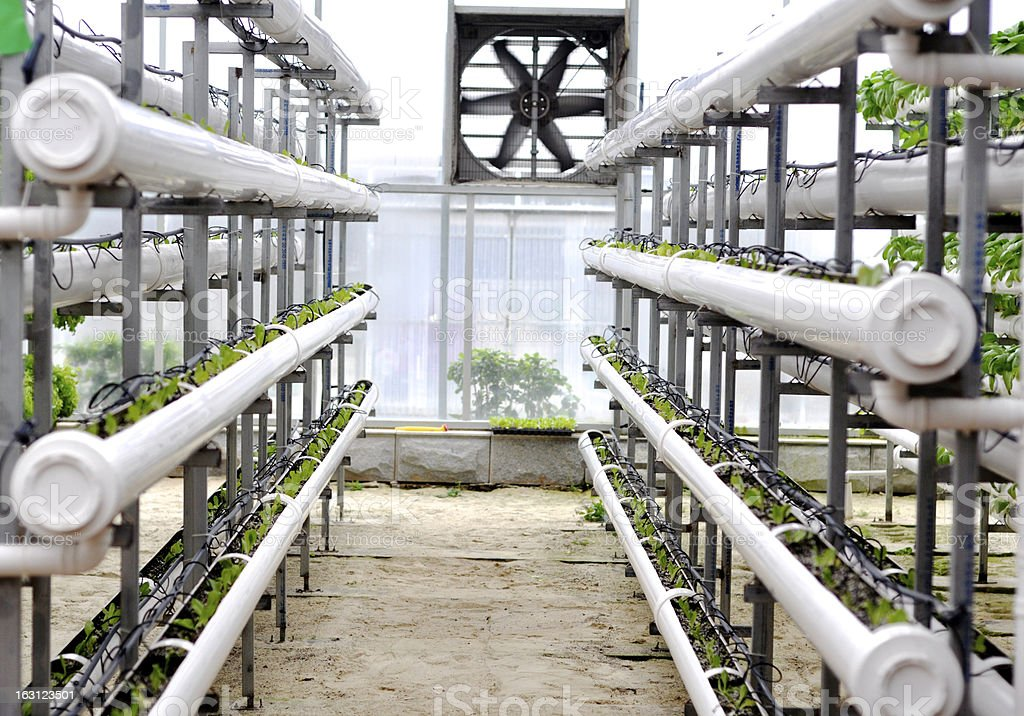 modern agriculture stock photo