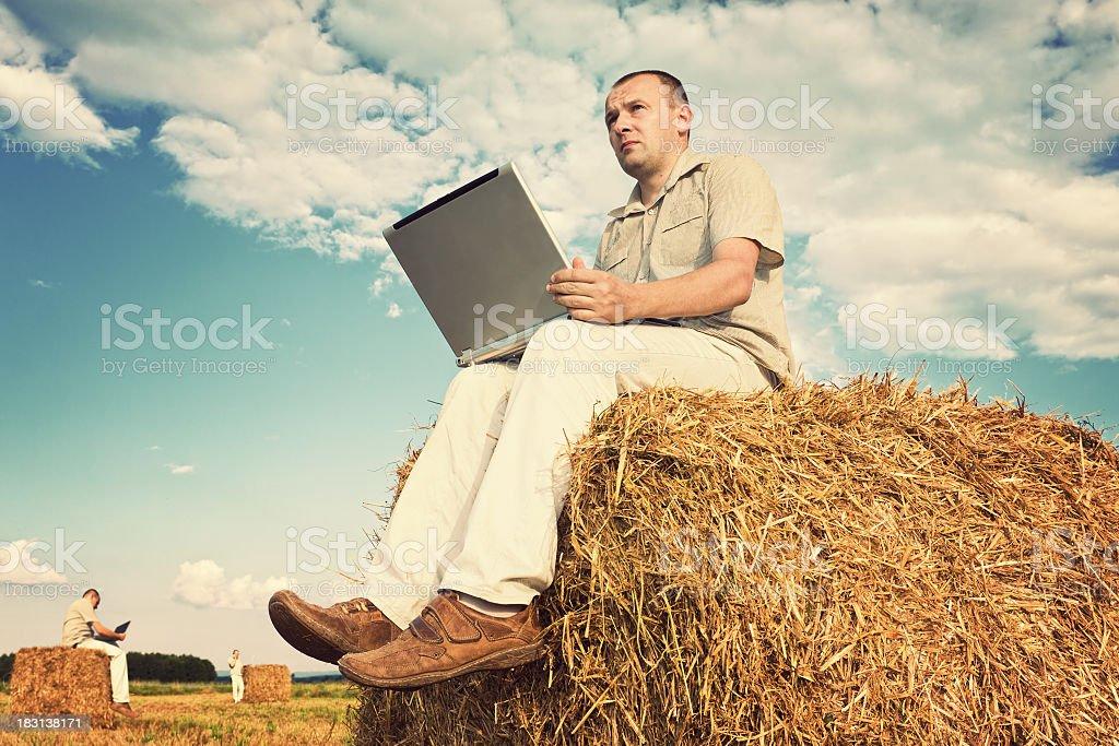 Modern agrobusiness stock photo