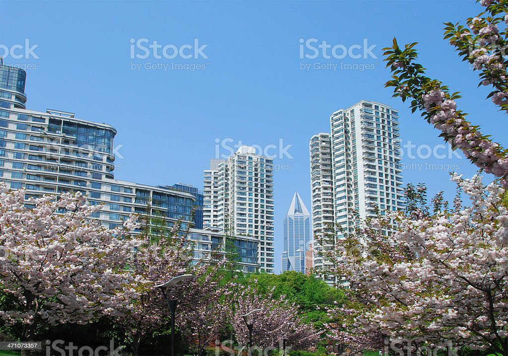 Modern apartments in Shanghai royalty-free stock photo