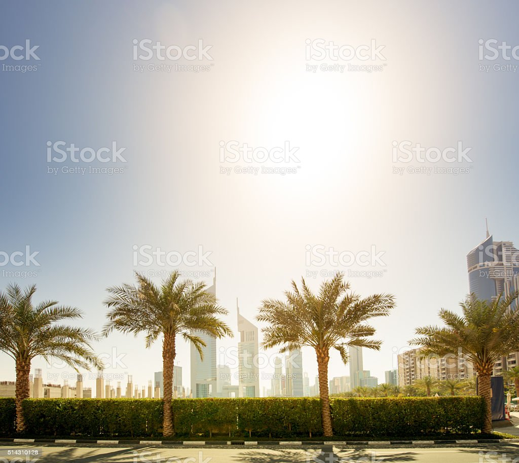 Modern Architecture with palm trees stock photo
