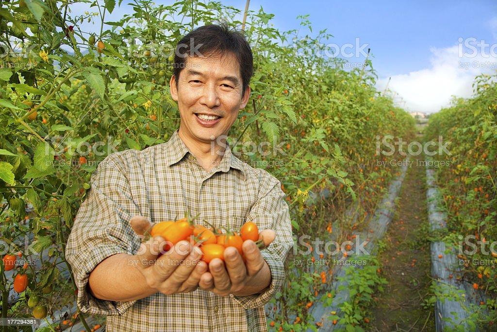 modern asian farmer royalty-free stock photo