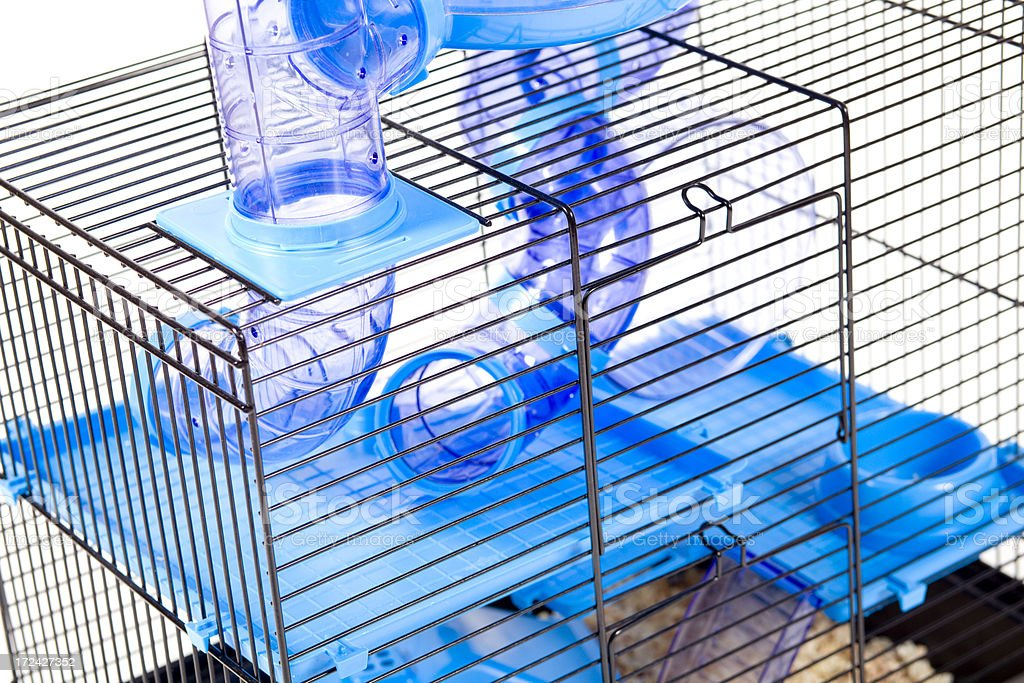 modern cage for hamster XXXL royalty-free stock photo