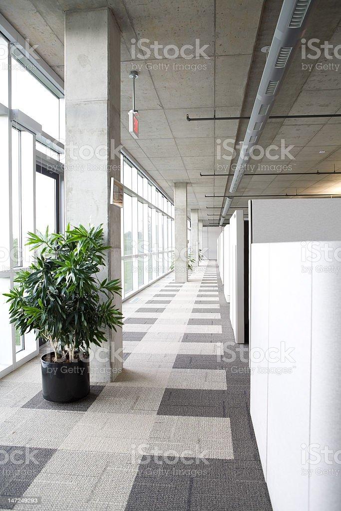 Modern clean office hallway stock photo