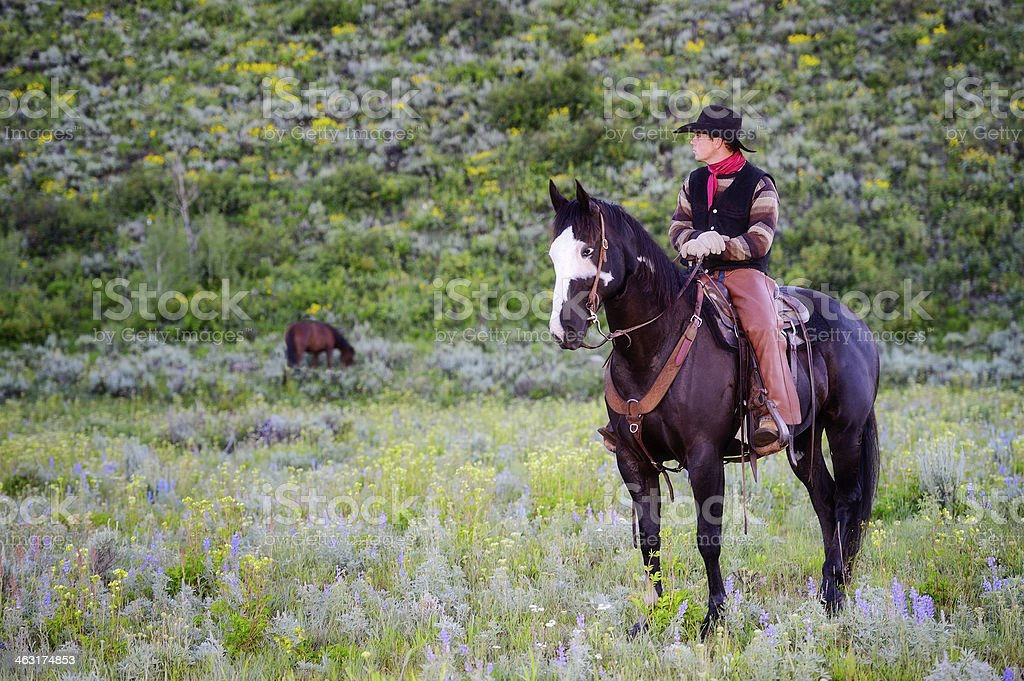 Modern Day Cowboy Making His Rounds On Horseback royalty-free stock photo